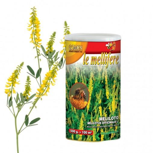Semi di Meliloto: sementi...